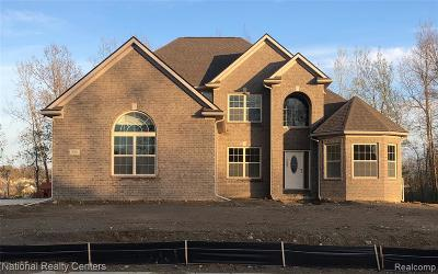 Oxford Single Family Home For Sale: 388 Golfside Drive