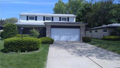 Southfield Single Family Home For Sale: 18210 Onyx Street Street N