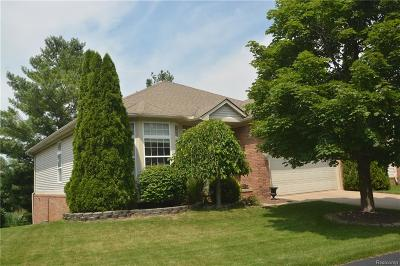 Rochester Hills, Rochester Single Family Home For Sale: 3142 Bridlewood Drive