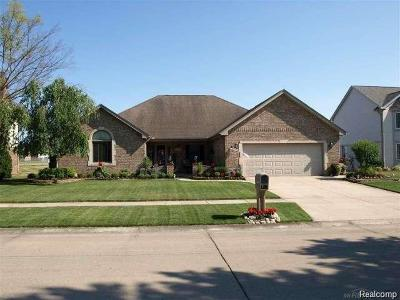 Clinton Twp Single Family Home For Sale: 37806 Pocahontas Drive