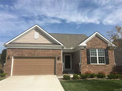 Brownstown Twp Single Family Home For Sale: 27476 Montague Drive
