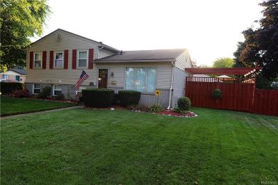 Livonia Single Family Home For Sale: 14055 Hix Street