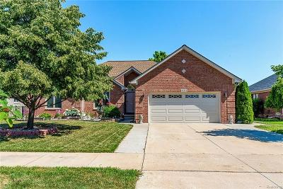 Macomb Twp Single Family Home For Sale: 21341 Rome Drive