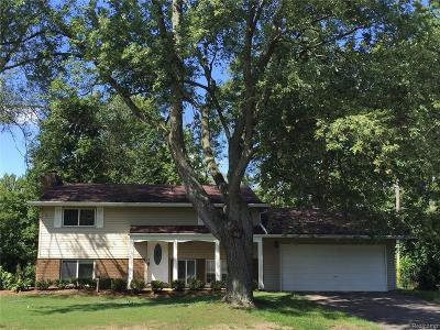 Commerce Twp Single Family Home For Sale: 2505 N Trail Road