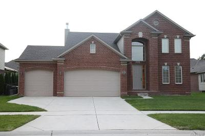 Macomb Twp Single Family Home For Sale: 49943 Becher Drive E
