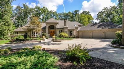 Green Oak Twp MI Single Family Home For Sale: $2,200,000