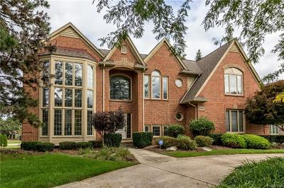 Rochester Hills Single Family Home For Sale: 3806 Rosewood Lane