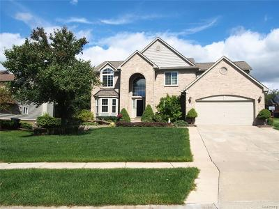 South Lyon MI Single Family Home For Sale: $359,990