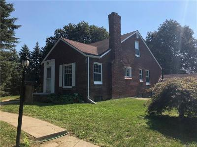 Northville Twp Single Family Home For Sale: 49575 7 Mile Road