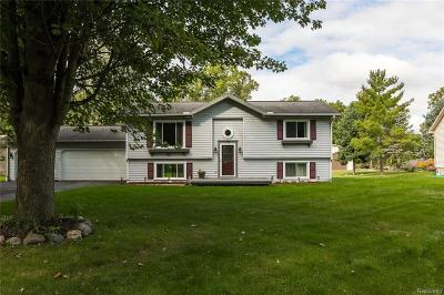 South Lyon Single Family Home For Sale: 770 S Hagadorn Street