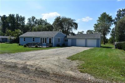 Huron Twp Single Family Home For Sale: 21842 Springhill Street