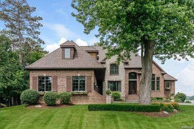 Brighton MI Single Family Home For Sale: $1,424,000