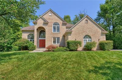 West Bloomfield Single Family Home For Sale: 1985 Christopher Court