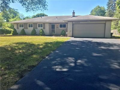 Farmington Hills Single Family Home For Sale: 32501 W Thirteen Mile
