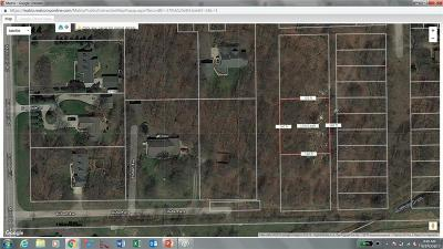Huron Twp Residential Lots & Land For Sale: Central Street