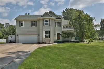 Huron Twp Single Family Home For Sale: 23275 Merriman Road
