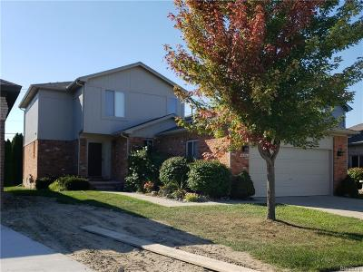Chesterfield Twp Single Family Home For Sale: 32806 Birchwood Dr.