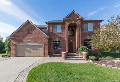 Washington Twp Single Family Home For Sale: 8684 Washington Woods Drive