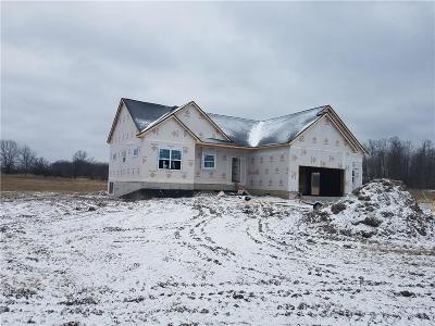 Hartland Twp Single Family Home For Sale: 5818 Runyan Lake Road