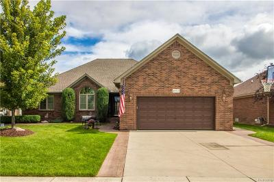 Macomb Twp Single Family Home For Sale: 48360 Providence