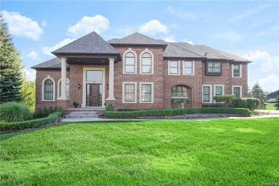 Oakland Twp Single Family Home For Sale: 4747 Wind Ridge Court