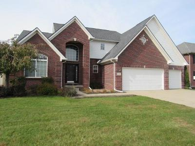 Brownstown Twp Single Family Home For Sale: 32574 Bondie Drive