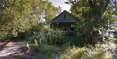 Detroit Residential Lots & Land For Sale: 217 S Morrell Street