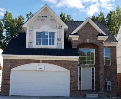 Shelby Twp Single Family Home For Sale: 13850 Grandeur Avenue