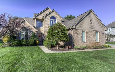 White Lake Single Family Home For Sale: 8430 Trenton Drive