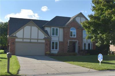 Rochester Hills Single Family Home For Sale: 1341 Arbor Creek Drive