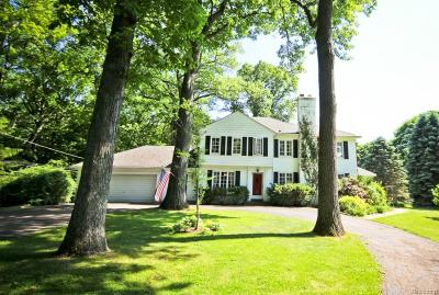 Bloomfield Twp Single Family Home For Sale: 376 Wattles Road
