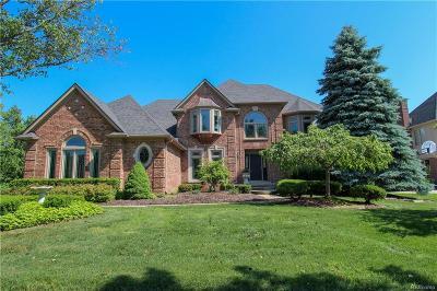 Novi Single Family Home For Sale: 41718 Chesterfield Court