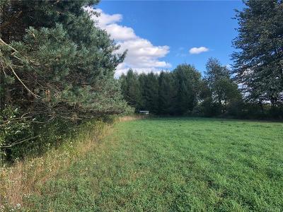 Washington Twp Residential Lots & Land For Sale: 3850 Walker Road
