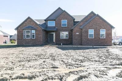CANTON Single Family Home For Sale: 47559 Ellery Lane