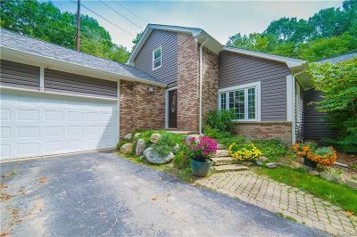 Brandon Twp Single Family Home For Sale: 1075 Granger Road