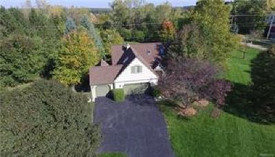 Ann Arbor, Scio, Ann Arbor-scio, Scio, Scio Township, Scio Twp Single Family Home For Sale: 4154 Saginaw Court