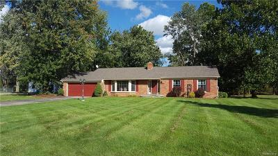 Ray Twp Single Family Home For Sale: 65100 Romeo Plank Road