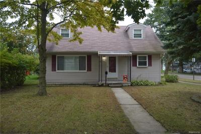 Flat Rock Single Family Home For Sale: 28475 N Wesley Avenue