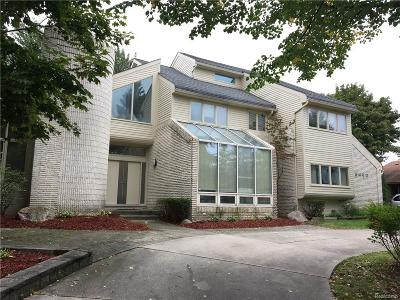 West Bloomfield, West Bloomfield Twp Single Family Home For Sale: 6460 Summer Court