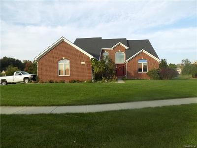 Flat Rock Single Family Home For Sale: 26827 Robin Court