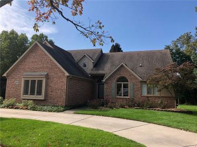 Novi Single Family Home For Sale: 21045 Chase Drive