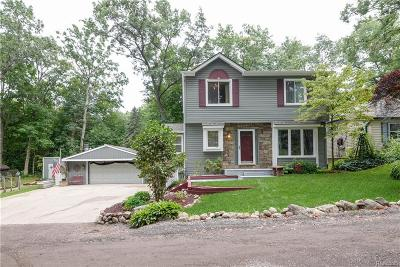 Milford Twp Single Family Home For Sale: 3045 Hillside Drive