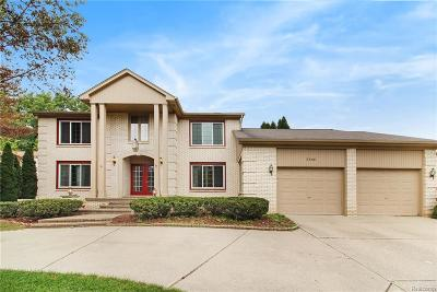 Rochester Hills Single Family Home For Sale: 2848 River Trail Drive