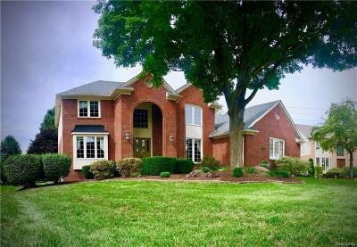 Shelby Twp Single Family Home For Sale: 54239 Talon Court
