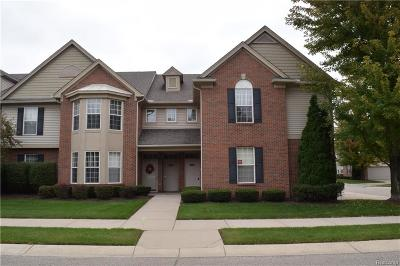 Shelby Twp Condo/Townhouse For Sale: 49274 Silver Birch Circle