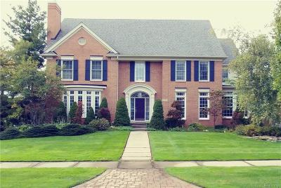 West Bloomfield Twp Single Family Home For Sale: 6538 Crest Top Drive