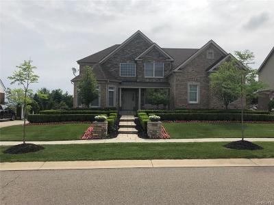 Novi Single Family Home For Sale: 50480 Langley Drive