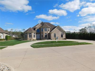 Brownstown Twp Single Family Home For Sale: 26950 Debiasi Drive