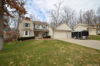 Waterford Single Family Home For Sale: 4441 Red Oak Boulevard