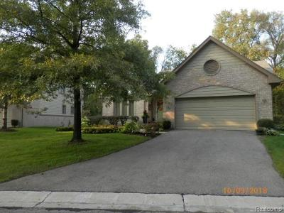 West Bloomfield Condo/Townhouse For Sale: 6830 Heron Point
